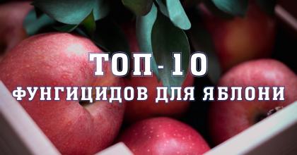 ТОП - 10 Фунгіцидів для яблуні