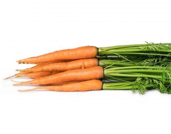 Морква Патзі 1,6-2,0 (Насіння) Clause