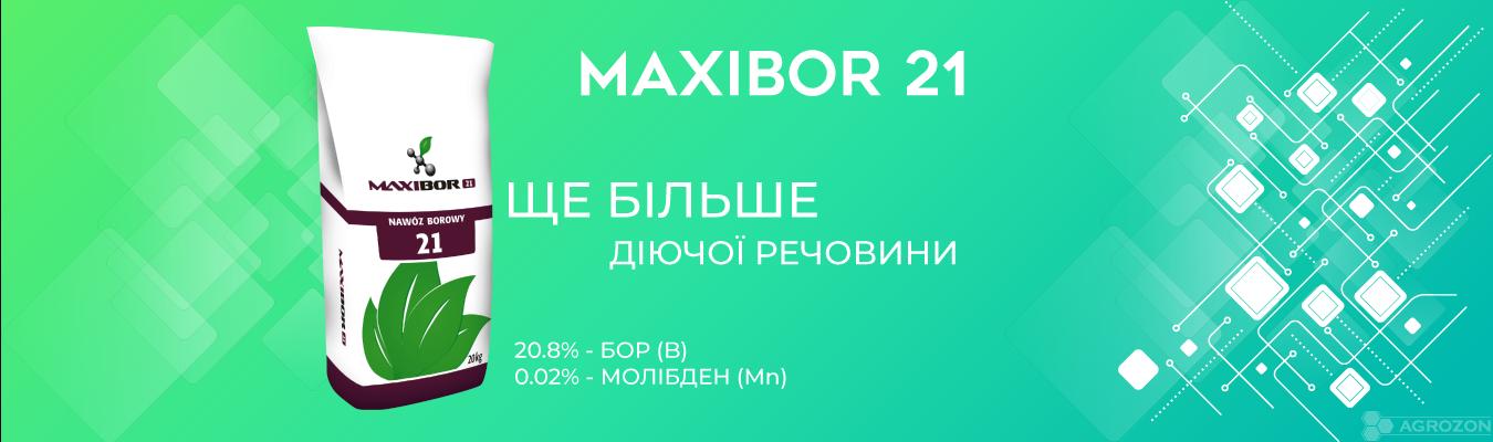 Максібор 21